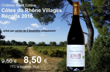 vin-du-mois-saint-esteve-villages